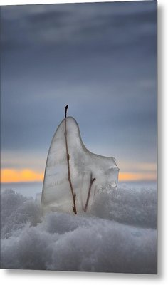 Frozen In Time Metal Print by Heather  Rivet