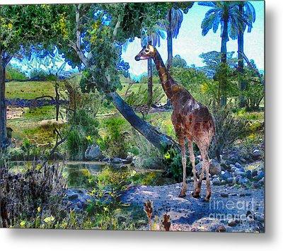 George The Giraffe Metal Print by Elinor Mavor