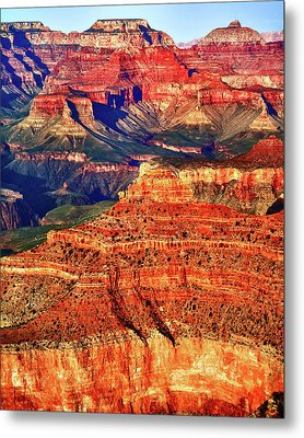 Metal Print featuring the photograph Grand Canyon National Park by James Bethanis