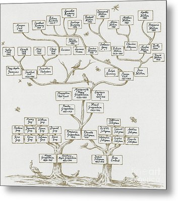 Guggenheim Family Tree Metal Print by Science Source