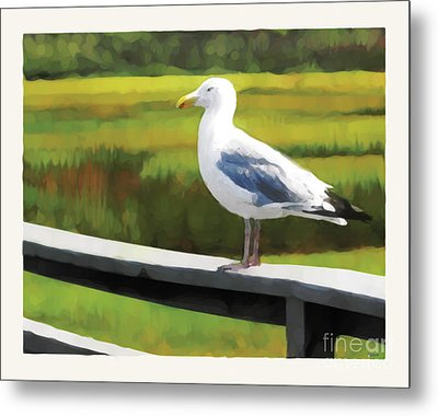 Gull One Metal Print