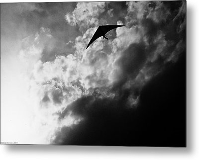 Hang Metal Print by Michael Nowotny