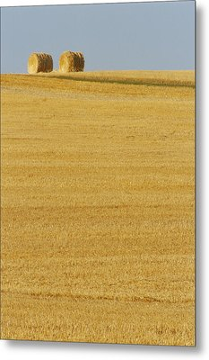 Hay Bales, Holland, Manitoba Metal Print by Mike Grandmailson