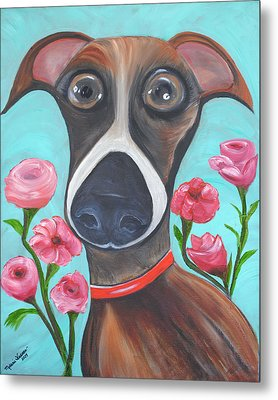 Hooper Icon For Shelter Dogs Metal Print by Melanie Wadman