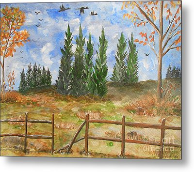 I Lift My Eyes Up To The Hills...... Metal Print by Barbara McNeil