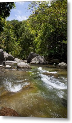 Iao River Metal Print by Jenna Szerlag