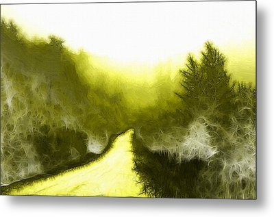 In The Forest Metal Print by Steve K