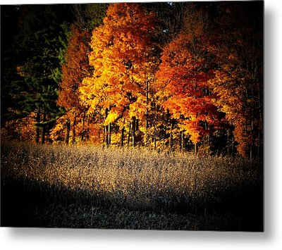 Indiana Autumn Metal Print by Michael L Kimble