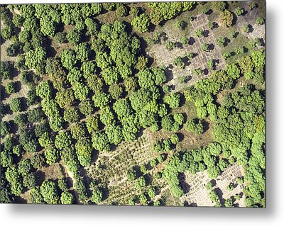 Irrigation Canals Provide Metal Print by Michael Fay