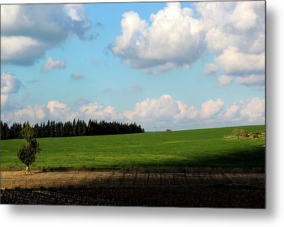 Israel's Countryside Metal Print by Gal Ashkenazi