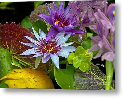 Metal Print featuring the photograph Lilies No. 32 by Anne Klar