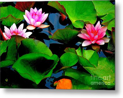 Lilly Abstract Metal Print