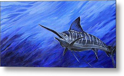 Marlin Metal Print by Jenn Cunningham