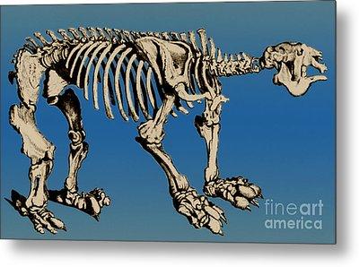 Megatherium Extinct Ground Sloth Metal Print by Science Source