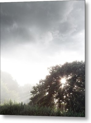Morning Sunlight  Metal Print by Les Cunliffe