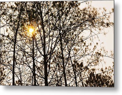 Nature Metal Print by Natee Srisuk
