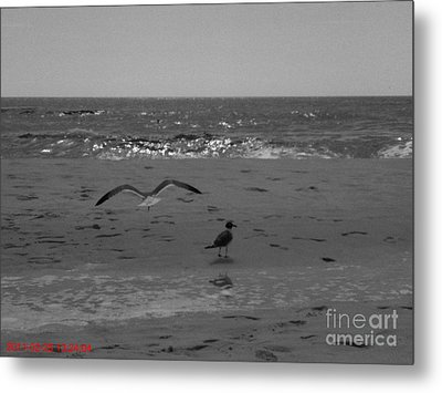 Metal Print featuring the photograph Navarre Beach by Janice Spivey