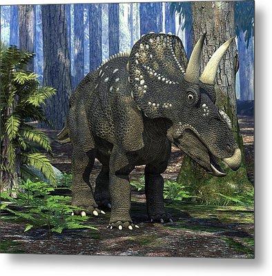 Nedoceratops Dinosaur, Artwork Metal Print by Roger Harris