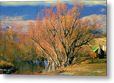 New Zealand Series - Creekside Autumn - South Island Metal Print by Jim Pavelle