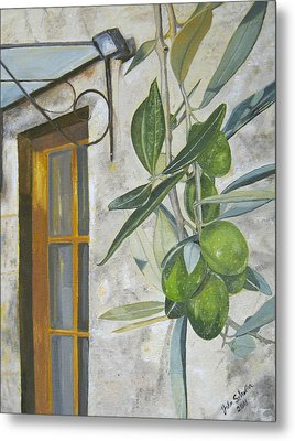 Olives In Tuscany Metal Print by John Schuller