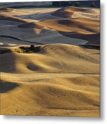 Palouse  Wa Metal Print by Tony Locke