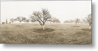 Peach Orchard Gettysburg Metal Print by Jan W Faul