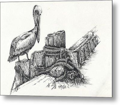 Pelican At Dockside Metal Print