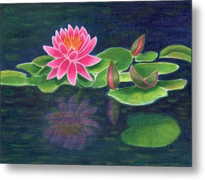 Pink Lily Of The Pond Metal Print