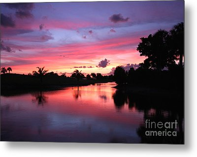 Plantation Preserve Sunset Metal Print by Jennifer Zelik