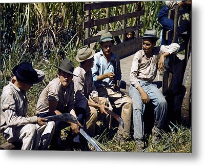 Puerto Rico. Sugar Cane Workers Resting Metal Print by Everett