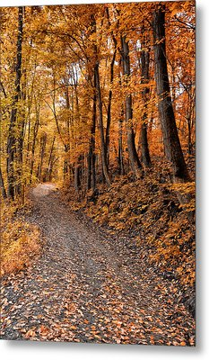 Ramble On Metal Print by Bill Cannon