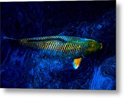 Rar Fish Metal Print
