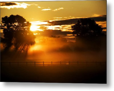 Metal Print featuring the photograph River Of Gold by John Chivers