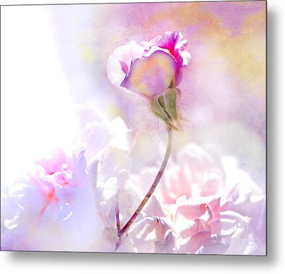Rose By Any Other Name Metal Print by Jeff Burgess