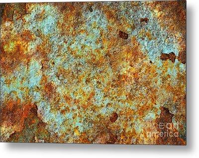 Rust Colors Metal Print by Carlos Caetano