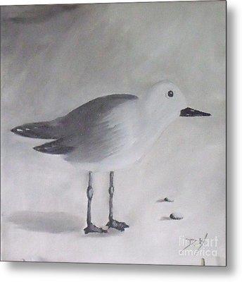 Seagull Metal Print by Debra Piro