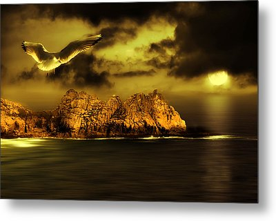 Seagull Flight Metal Print by Jaroslaw Grudzinski