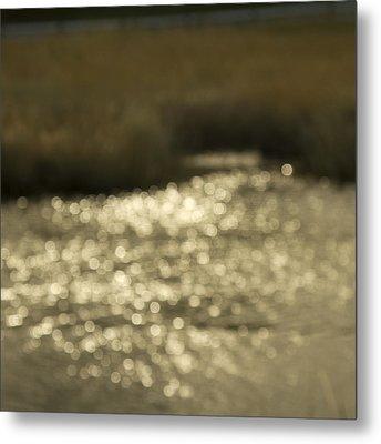 Seurat Sunshine Metal Print by Bob Retnauer