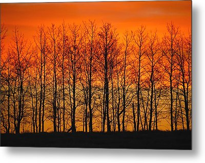 Silhouette Of Trees Against Sunset Metal Print