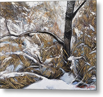 Snow Grass Metal Print by Jack Tzekov