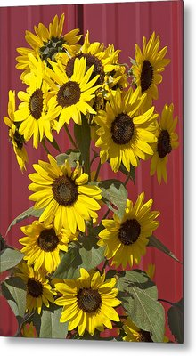 So Many Sunflowers Metal Print by Elvira Butler