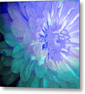 Soft Susy  Metal Print by Empty Wall