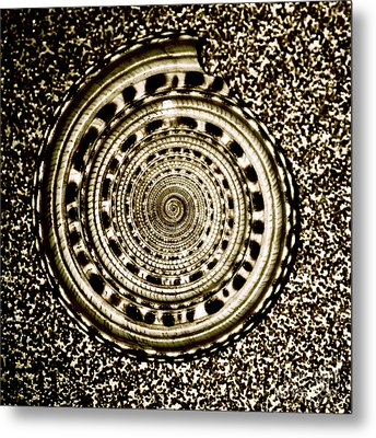 Spiral Metal Print by HD Connelly