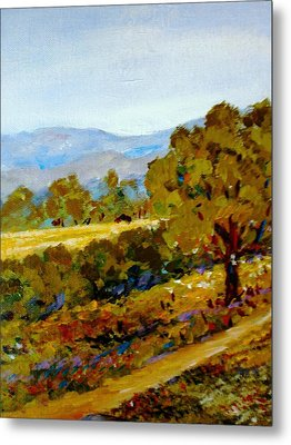Spring In The Valley Metal Print