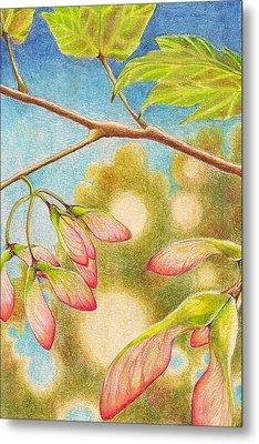 Springtime  Metal Print by Robin Birrell