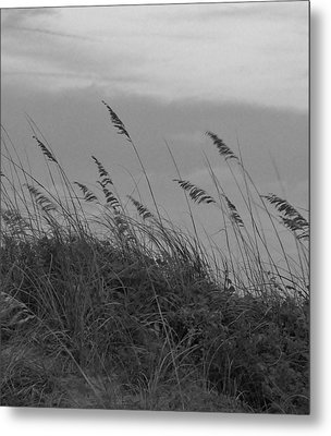 Summer Fairwell Metal Print by Stacy Sikes