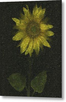 Sunflower Metal Print by Deddeda