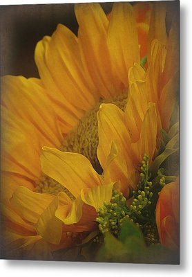 Sunflower Metal Print by Terry Eve Tanner