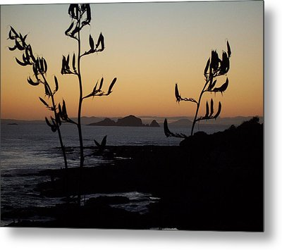 Metal Print featuring the photograph Sunrise On East Coast Of North Island 1 by Peter Mooyman