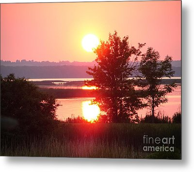 Sunset Ambience Metal Print by Ronald Tseng